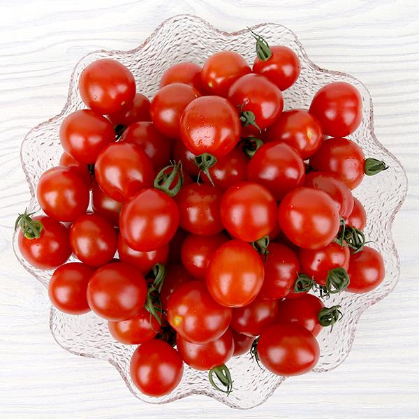명성호농가 /씨드림/대추방울토마토2kg(1~2번과)